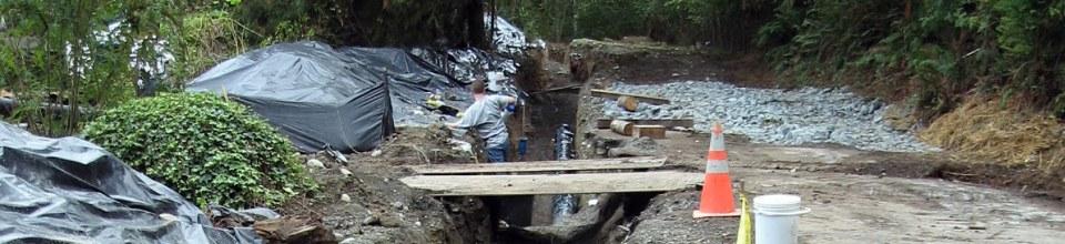 Inspection Lake Whatcom W S District Geneva Water Interie